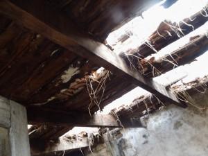 Plafond du bâtiment 1
